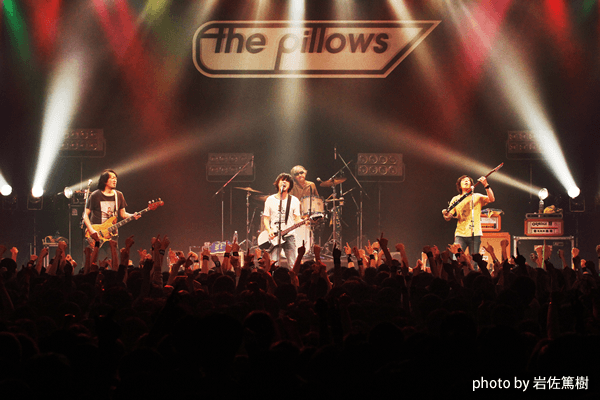 the pillows
