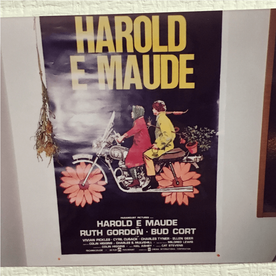 『ハロルドとモード 少年は虹を渡る』