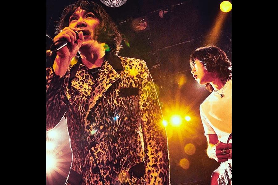 THE COLLECTORS(ザ・コレクターズ)digital single「お願いマーシー」